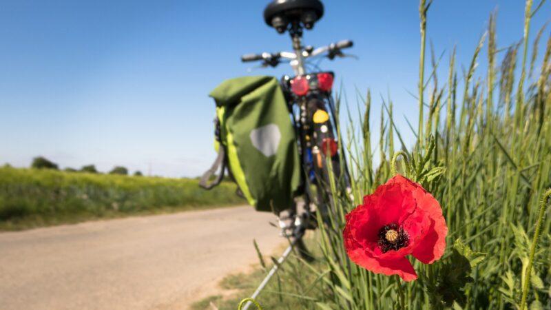 Smartfon na rowerze — jest to możliwe!